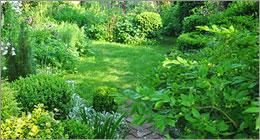Jardinage - Des merveilles sans pesticides