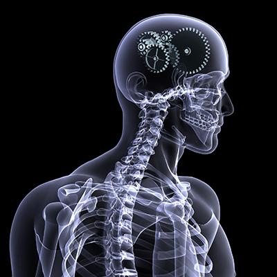 Votre cerveau, un allié à tout âge